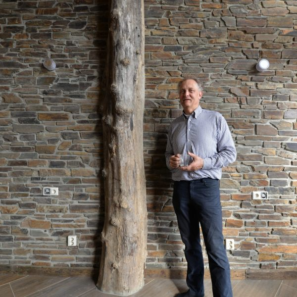 Steenstrips in combinatie met boomstam en houten vloer
