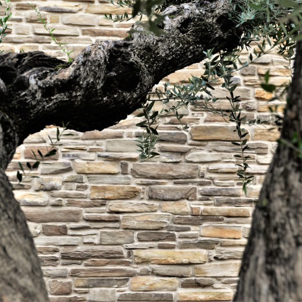 Steenstrips muur met diepte